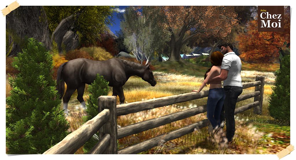 Fence & Horses 1 low CHEZ MOI