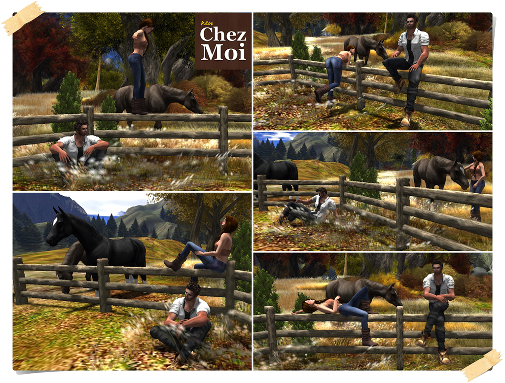 Fence & Horses Single Poses CHEZ MOI
