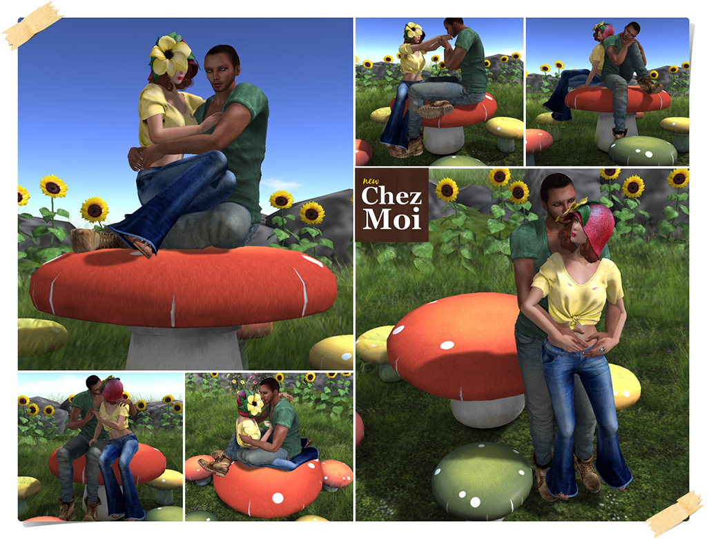 Toadstool Table Poses CHEZ MOI